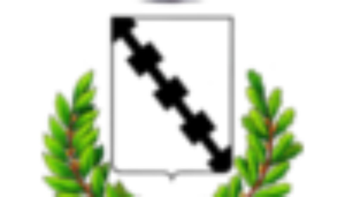 stemma-comune-santa-maria-di-sala100